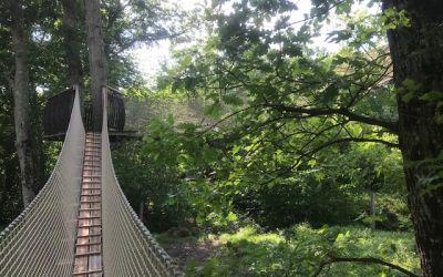 cabane dans les arbres tout confort-proche de Beauval.jpg