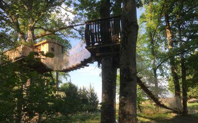 cabane du vieux chêne-proche du Futuroscope.jpg